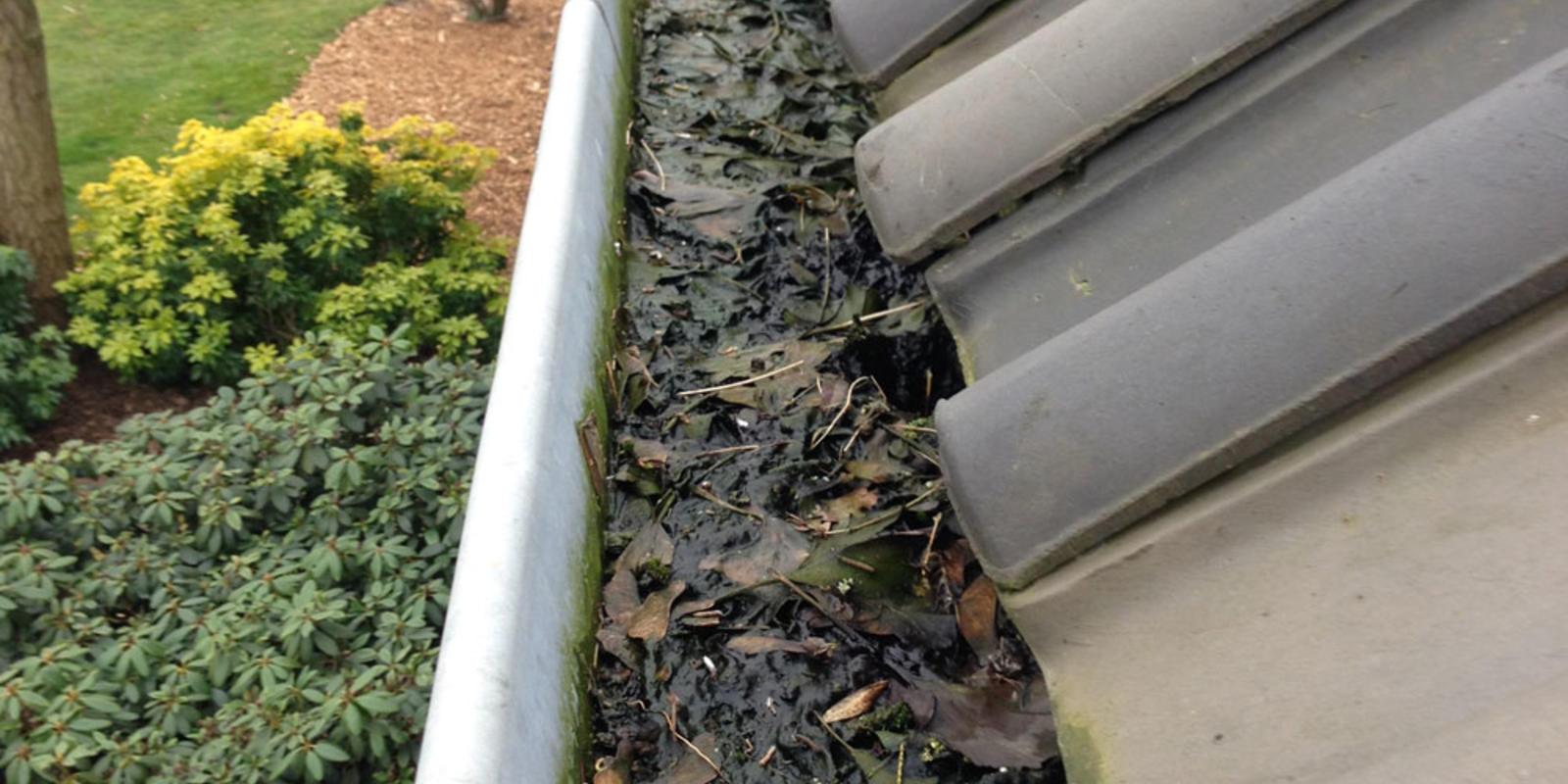 dakgoot herfstklaar maken