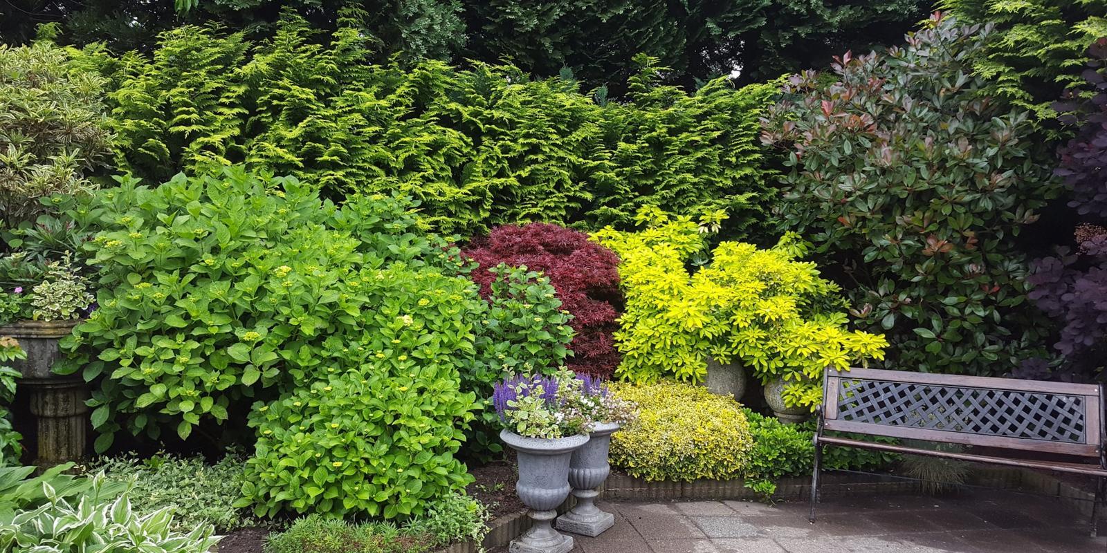 Kleine tuin optisch vergroten
