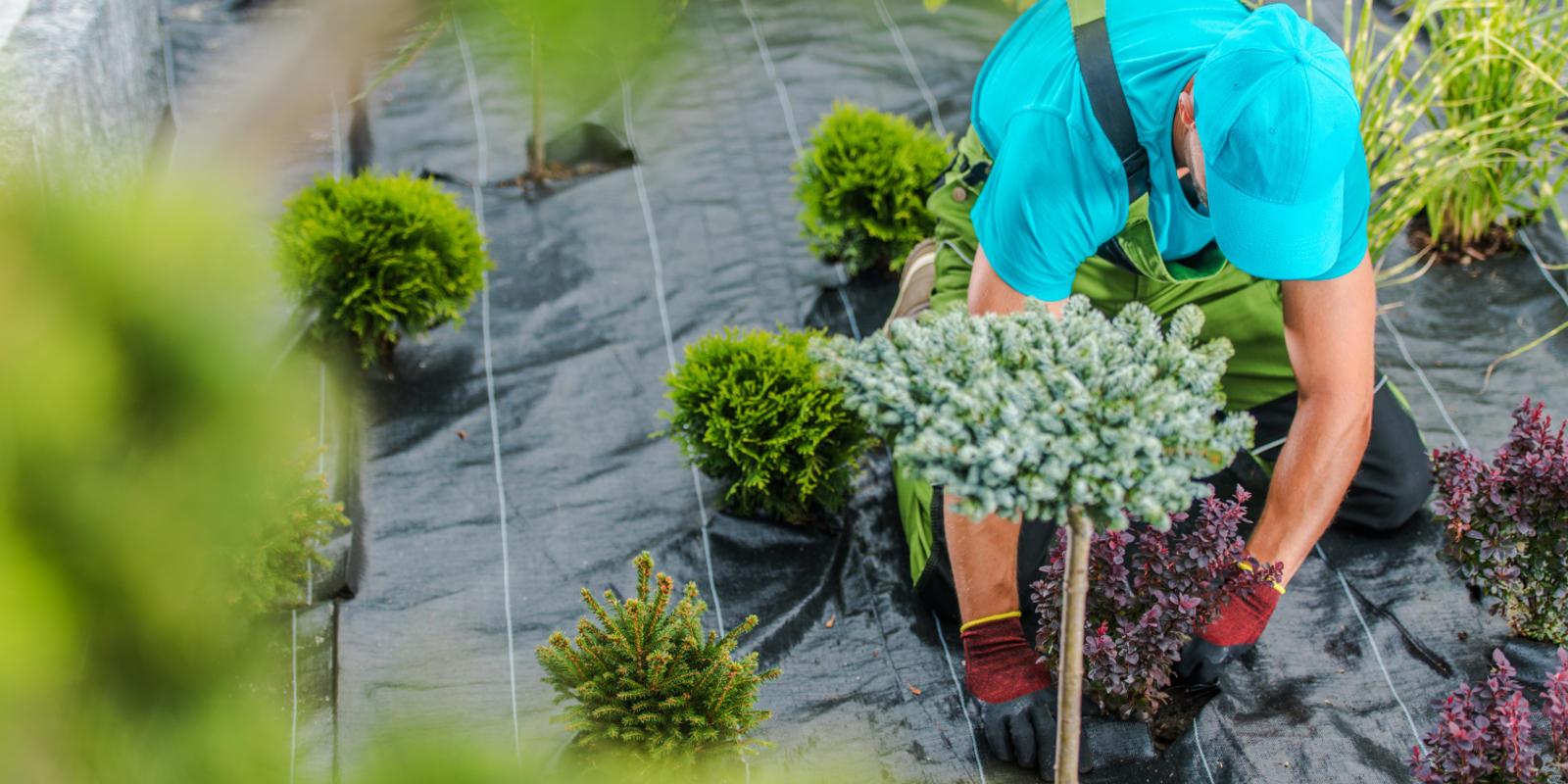 wat kost tuin aanleggen