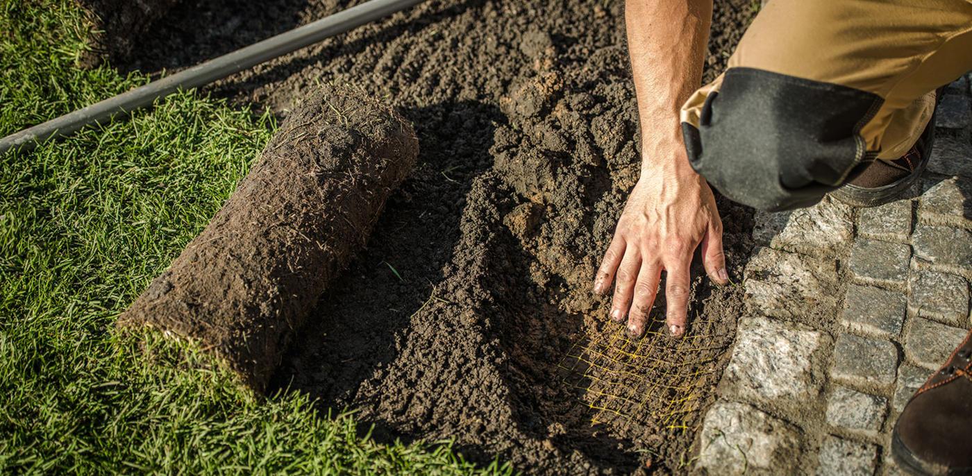 Tuin aanleggen? 🏡 Kosten tuinaanleg & GRATIS tuin offerte   Slimster