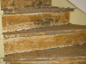 Lijmresten verwijderen trap via - Renovatie houten trap ...
