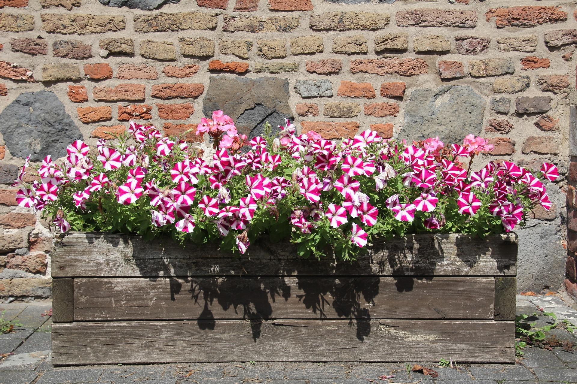 Houten bloembak zelf maken