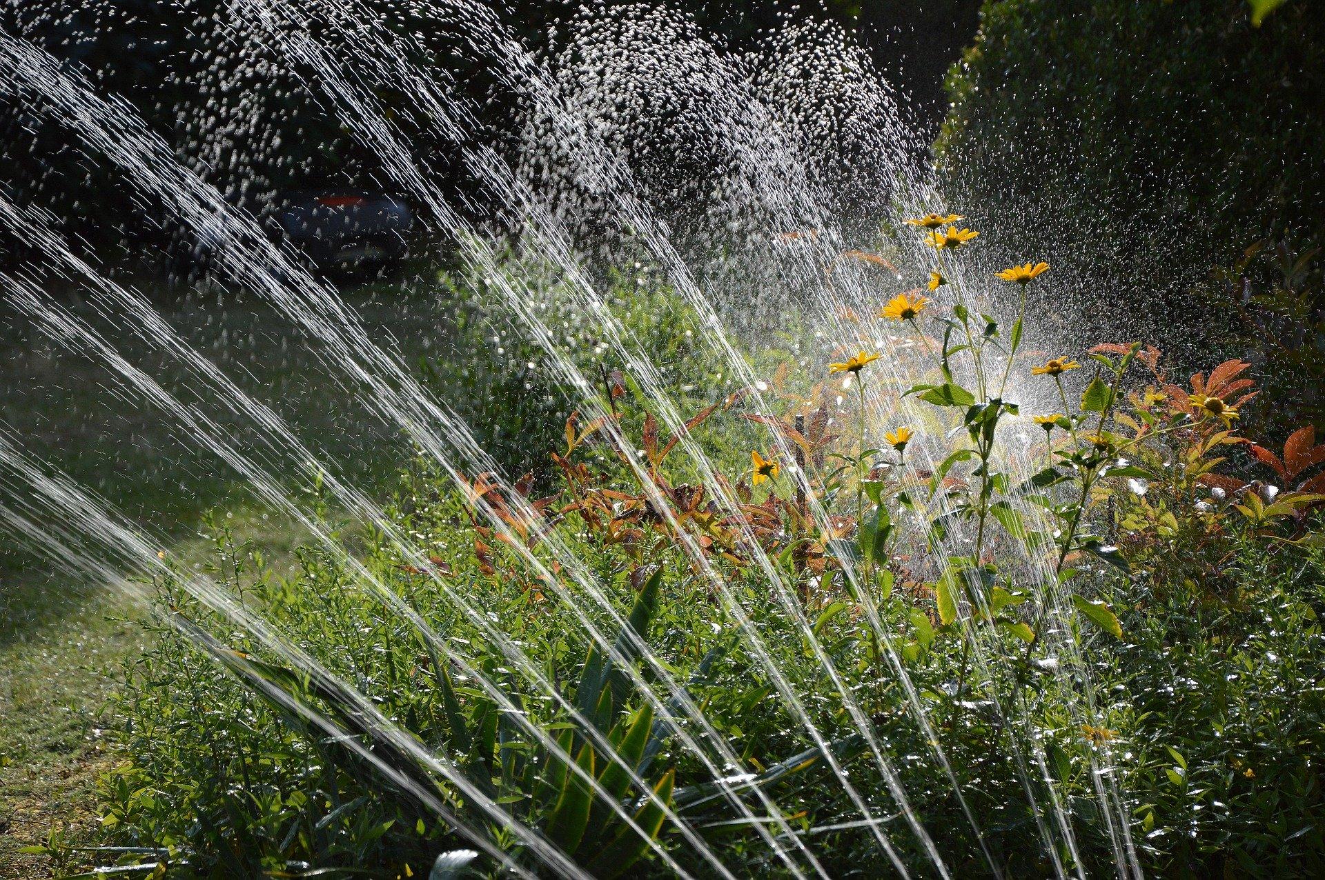 Tuin sproeien