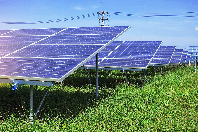 zonnepanelen in weiland